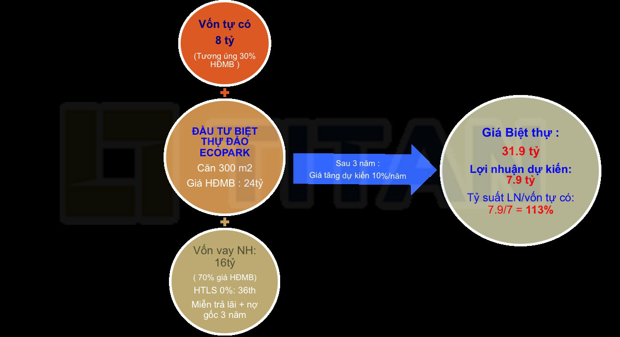 Chính sách bán hàng ưu đãi cùng với tiềm năng tăng giá cao đã tạo nên sức hút của biệt thự đảo Ecoparl