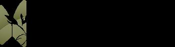 Logo chung cư Sol Forest Ecopark